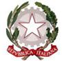 CPIA CREMONA logo